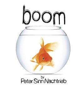 Image boom
